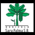 LOGO SARA PALMA - 120x120
